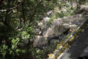 A rocky dried stream bed plunging down the side of Victoria Peak